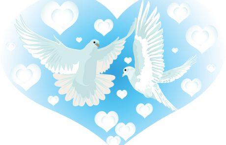 אהבה ואחוה