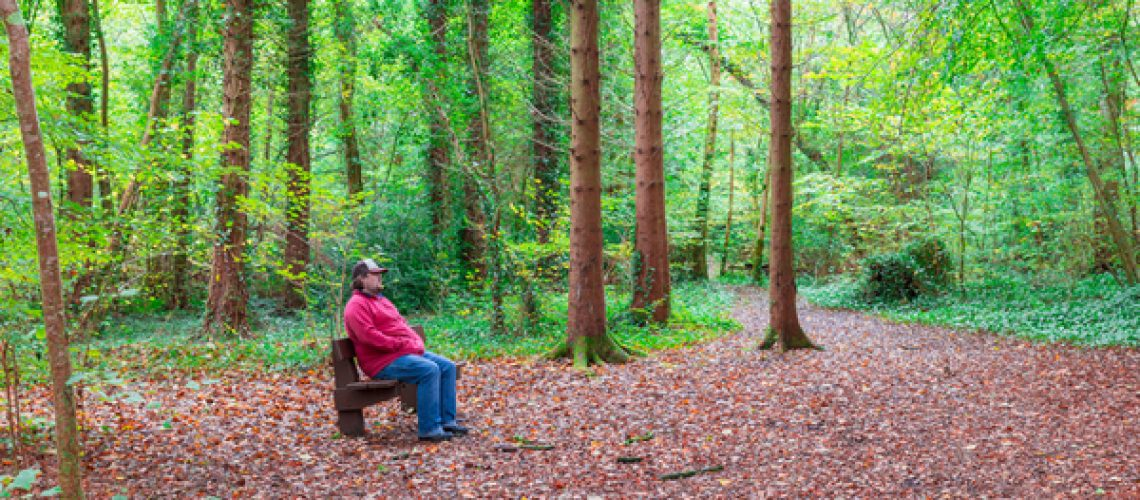 Man sitting on a bench in a forest in autumn